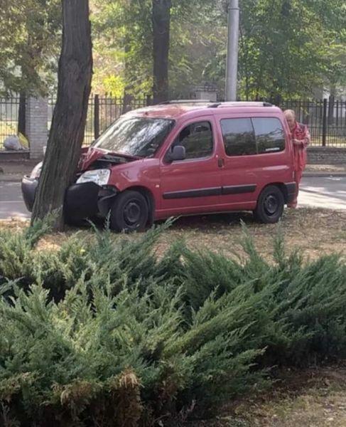 """В Запорожье авто врезалось в дерево: на месте работала """"скорая помощь"""""""